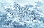 Frost Ice Snow