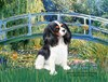 Cavalier King Charles Spaniel Dog Art