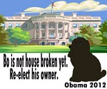 Bo Obama