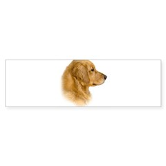 Golden Retriever Portrait Oval Sticker (Bumper 10 pk)