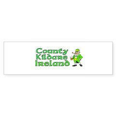 County Kildare, Ireland Rectangle Sticker (Bumper 10 pk)
