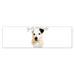 JRT Mom2 Rectangle Sticker (Bumper 10 pk)