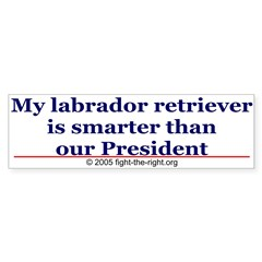 My labrador retriever is smarter (bumper sticker) Sticker (Bumper 10 pk)