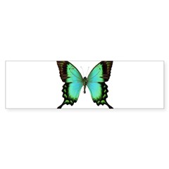 Green Butterfly Rectangle Sticker (Bumper 10 pk)