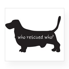 "Sticker: ""Who rescued who?"" Wine Label"