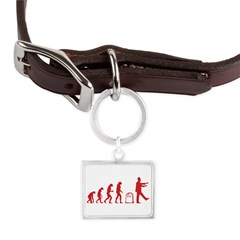 Evolution zombie Large Landscape Pet Tag