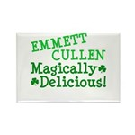 Emmett Magically Delicious Rectangle Magnet