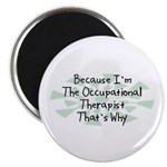 Because Occupational Therapist Magnet