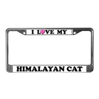 Himalayan Cat License Plate Frames