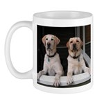 Aug Lab of the Month Mug