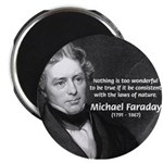 Michael Faraday Magnet