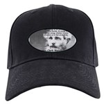 Maxwell's Electromagnetic Equations Black Cap