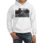 Renoir The Louvre & Nature Hooded Sweatshirt